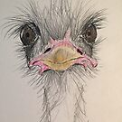 Goofy Angry Ostrich  by Bristlee1