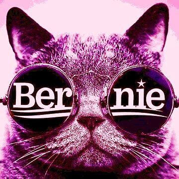 rosa Bernie Katze von Thelittlelord