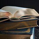 Golden Pages by mirandaburski