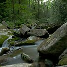 Catawba Falls, Old Fort, NC by Jay White