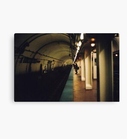 127n - 36w Canvas Print