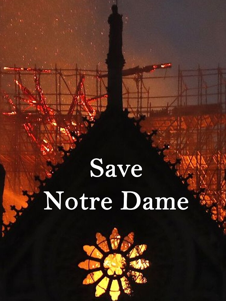 Save Notre Dame Cathedral by KnobbyNobbes