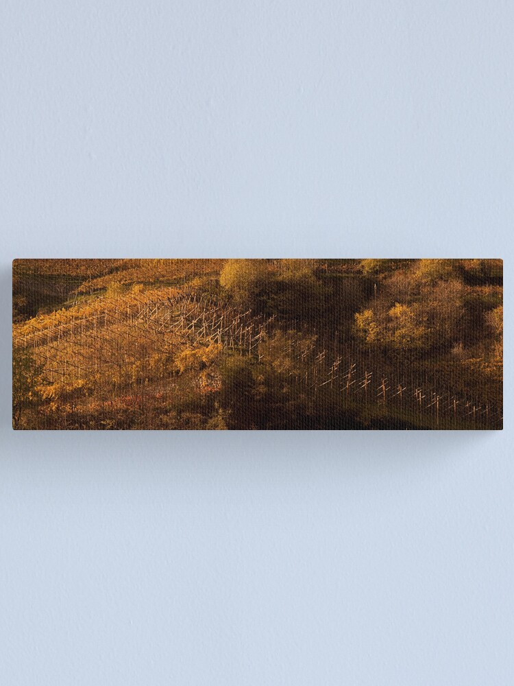 Alternate view of Uphill and down, Bolzano-Bozen, Italy, 2009 Canvas Print