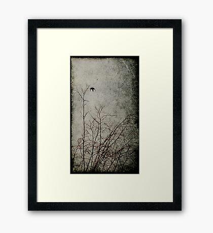 Attachment Disorder Framed Print