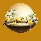 Sun Birds by DVerissimo