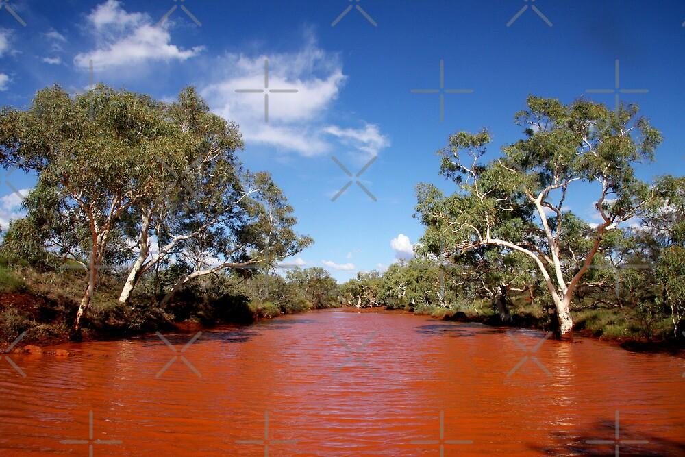 Pilbara Creek by Ngarluma78