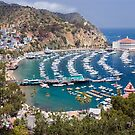 Catalina by the Sea by Mark Ramstead
