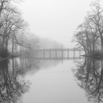 Puente del lago de primavera en la niebla de ShootFirstNYC