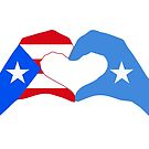 We Heart Puerto Rico & Somalia Patriot Flag Series by Carbon-Fibre Media