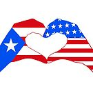 We Heart Puerto Rico & USA Patriot Flag Series by Carbon-Fibre Media