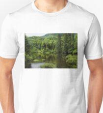 Quiet Rain and Forest Fairies  T-Shirt