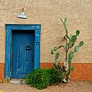 Elysian Grove Mkt - Tucson by Larry Costales