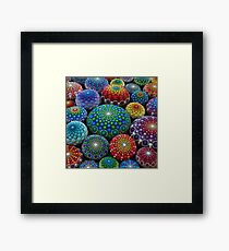 Jewel Drop Mandala Stone Collection #1 Framed Print