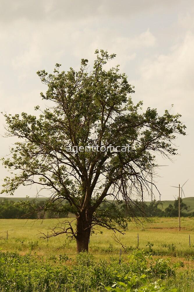 Lone tree near Oz by agenttomcat