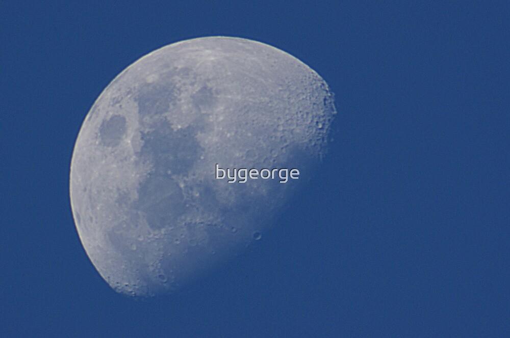 It's a Blue Moon by bygeorge