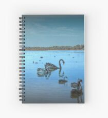 Black Swans at Lake Joondalup, Western Australia Spiral Notebook