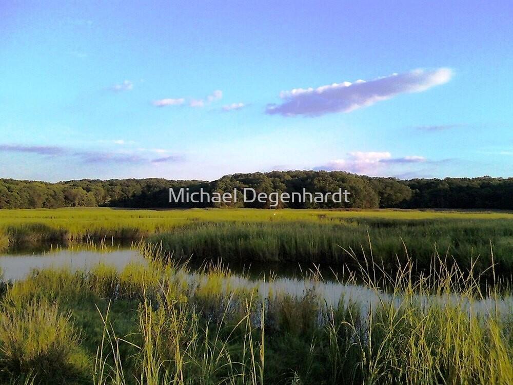 Cheesequake Park, New Jersey by Michael Degenhardt