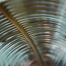 Palm-Zusammenfassung von Bethany Helzer