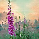 Foxglove in Washington State by Jeff Burgess