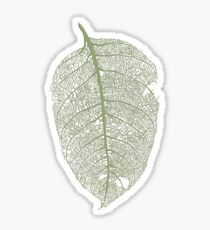 Leaf skeleton Sticker