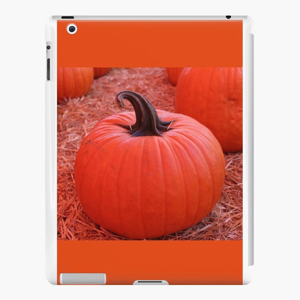 Kürbis-Bild-Kürbis mit einzigartigem gruseligem wirbelten Stamm iPad-Hüllen & Klebefolien