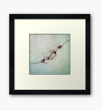 Caressing Touch Framed Print