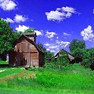 Little Barn by Linda Miller Gesualdo