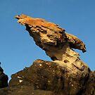 Eagle Rock by Reef Ecoimages