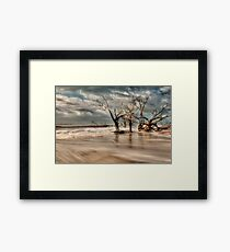 Botany Bay Framed Print