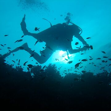 Diver Silhouetted on Reef - Cuyo Island Philippines by diveseven
