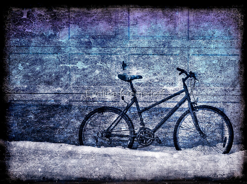 Bicycle by Evelina Kremsdorf