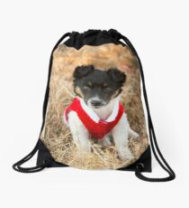 Christmas Puppy.... Drawstring Bag
