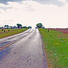 Road to Bliss- Marion, Texas by AARose