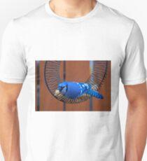 BlueJay @ the Feeder T-Shirt