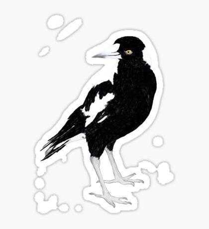 cheeky magpie Sticker