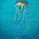 Jellyfish by Paul Julian