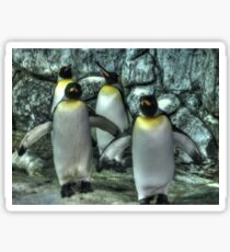 Four Penguins Sticker