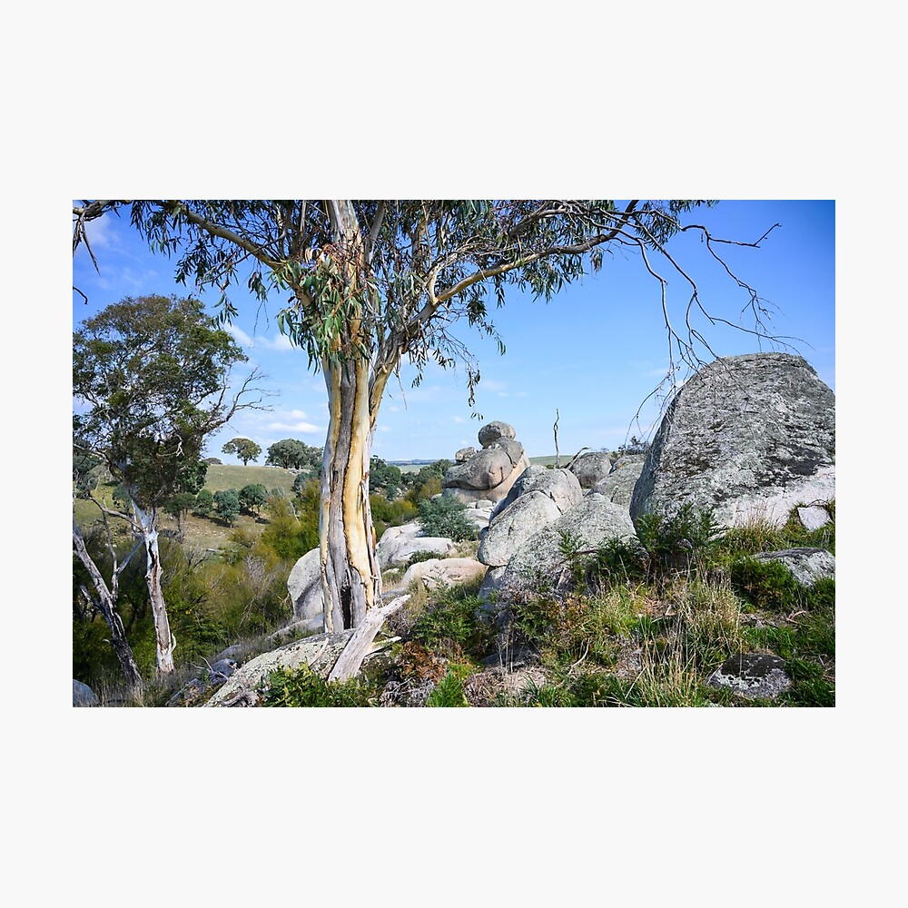 Wollondilly River Photographic Print