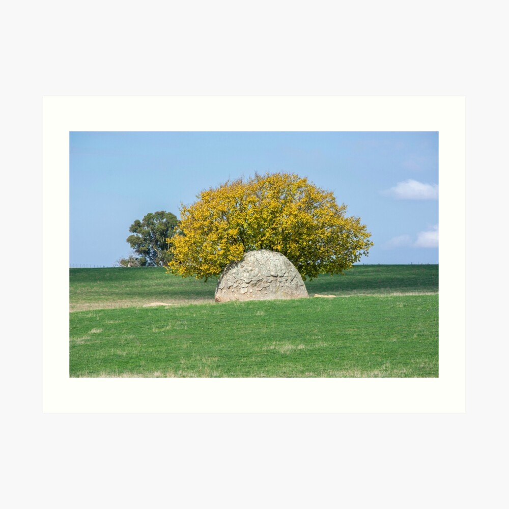 Rock and Tree in Meadow Art Print