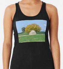 Rock and Tree in Meadow Women's Tank Top