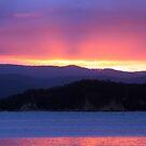 Eden Sunset by Damien Pearse