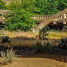Indian Timothy Memorial Bridge by Bryan D. Spellman