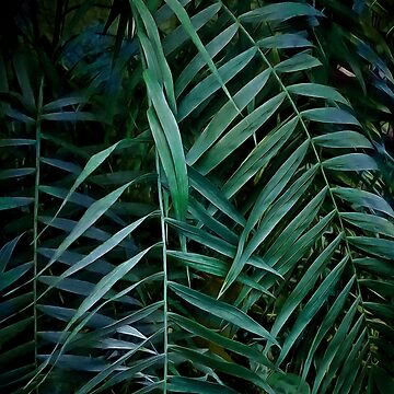 Night tropics by CatyArte
