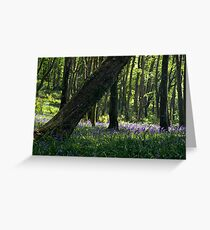 Courtmacsherry Bluebells Greeting Card