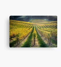 In Vino Veritas IV Metal Print