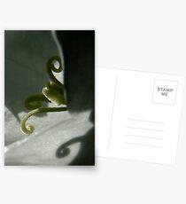 In the  heart of a flower Postkarten