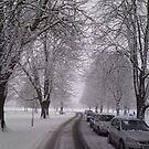 January Snow 2 by Davies72