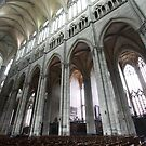 Amiens Cathedral by Gothman