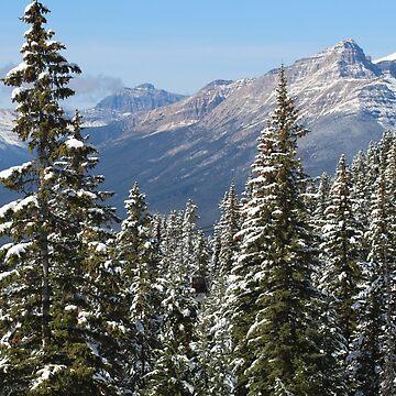 Canadian Landscape by paulgodley