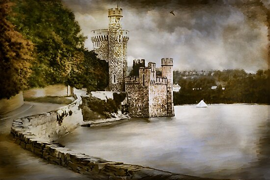 Blackrock Castle by andy551